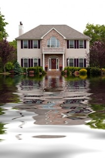 Water damage repair & restoration