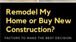 Remodel My Home or Build New