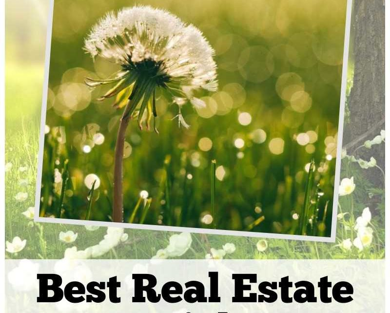 Best Real Estate May 2020