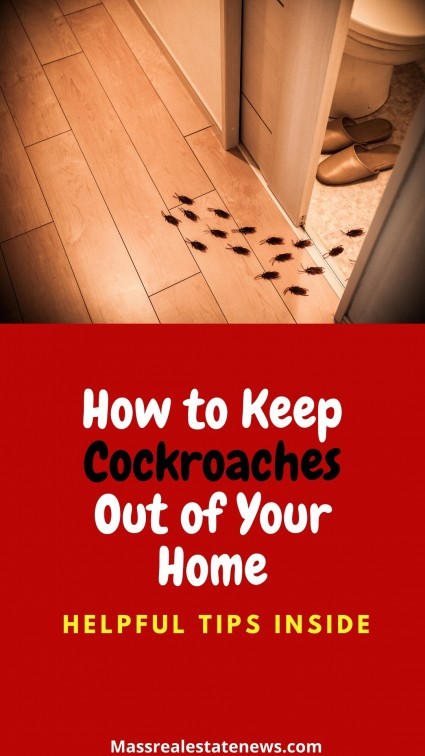 Keep Cockroaches Out of Home